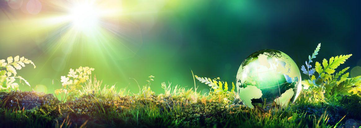 Green Globe On Moss - Envinronmental Concept